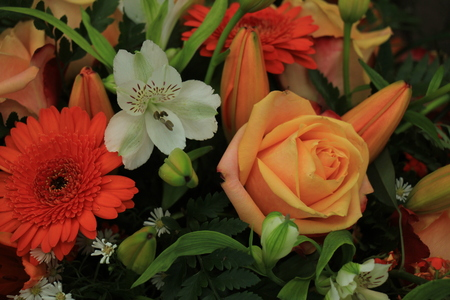 Orange and white wedding bouquet with various flowers stock photo orange and white wedding bouquet with various flowers stock photo 85195562 mightylinksfo