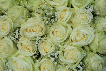 white rose and gypsophila bouquet for a wedding