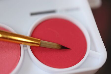Red watercolor paint and brush in close up Imagens