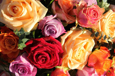Colorful rose bouquet with rain drops after a shower Standard-Bild