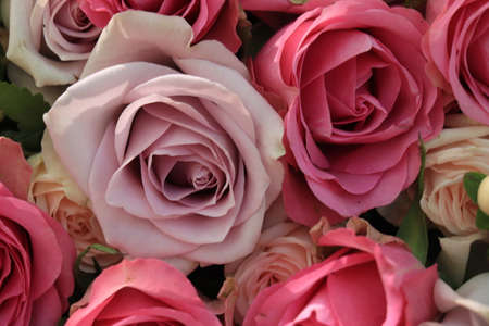 Pink and purple roses in a big wedding centerpiece Standard-Bild