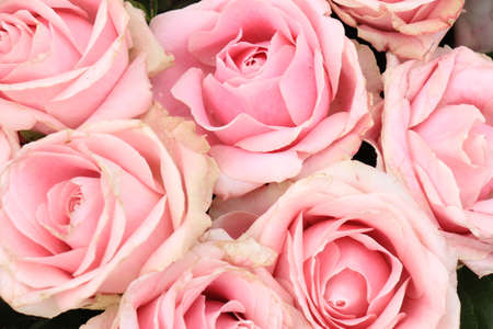 Big pink roses in a floral wedding decoration