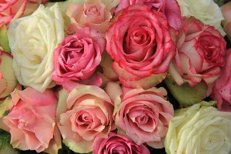 Roses in various shades of pink, wedding decorations