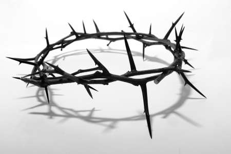 crown of thorns Imagens