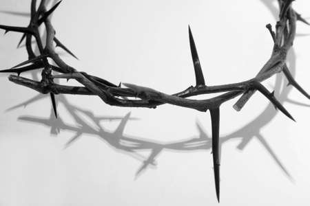 thorns: crown of thorns Stock Photo