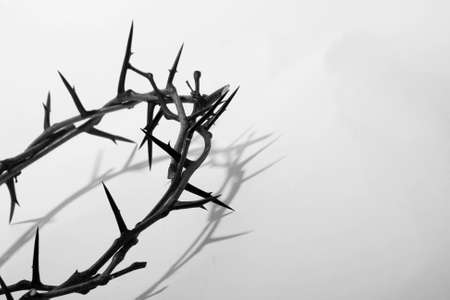 thorn: crown of thorns