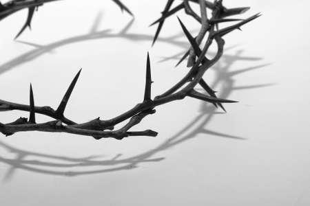 crown of thorns: crown of thorns