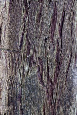 vintage barn wood texture background photo
