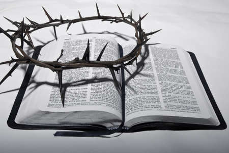 crown of thorns on bible photo