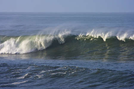 breaking wave: early morning california wave