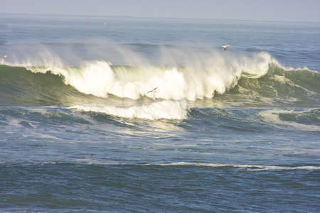 waterscape: early morning california wave