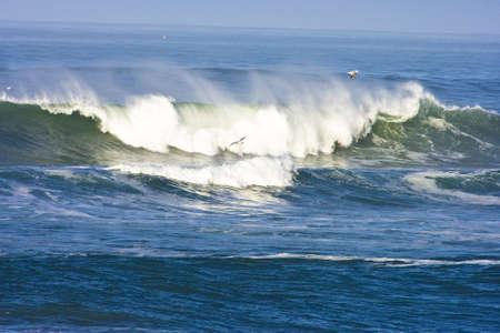 early morning california wave  photo