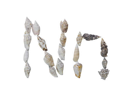 N letter from real seashells isolated on white background  photo