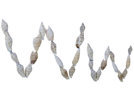 sea mark: W letter from real seashells isolated on white background  Stock Photo