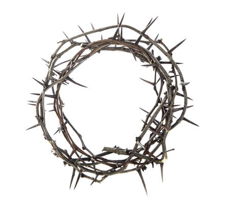 Crown of thorns on white photo