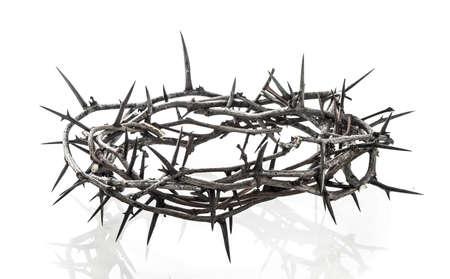 corona de espinas: Corona de espinas en blanco