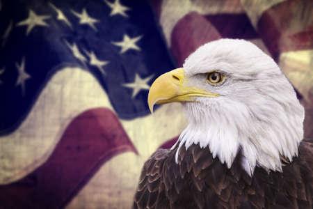 hawks: Aquila calva con la bandierina americana fuori fuoco e look grunge Archivio Fotografico