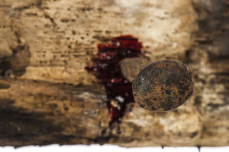 crucify: rusty nail on wood with blood drips