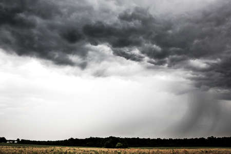 cumulus cloud: Stormy clouds