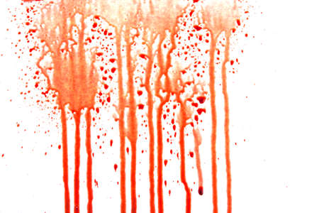 blood splatter: Dripping blood isolated on white