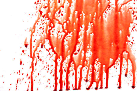 Dripping blood isolated on white photo