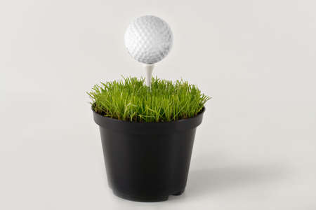vase with grass and gof ball with tee Stock Photo