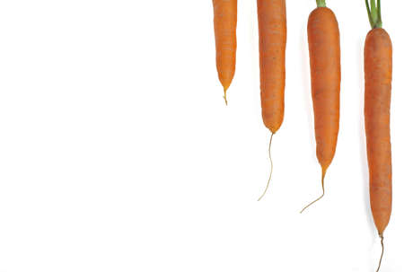 carrots in diagonal line , over a white background