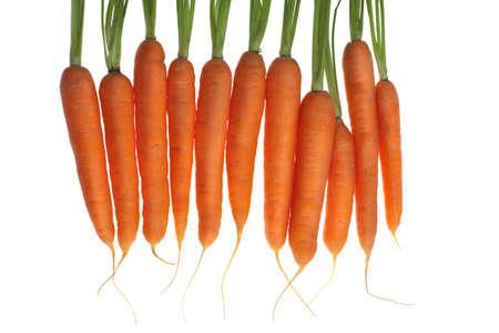 Karotten in Line, weißer Hintergrund