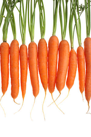 carrots over a white background