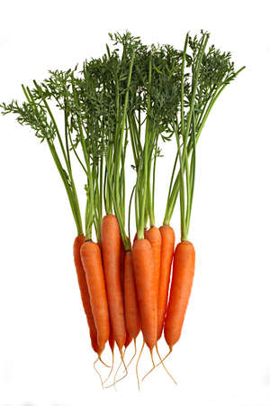 a bunch of carrots, isolated over a white background Stock Photo