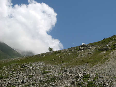 Caucasus. Summer in mountains. Russian Federation.