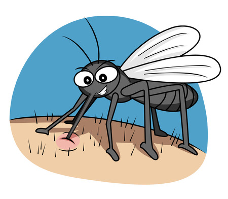 disease carrier: mosquito Illustration