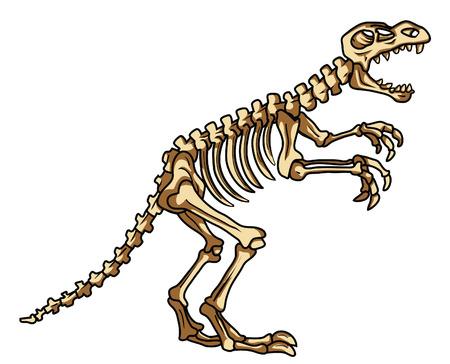 fossil: dinosaur fossil Illustration