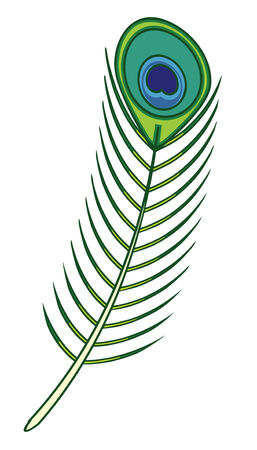 feather Stock Vector - 24115886