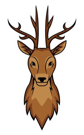 deer head: deer head Illustration