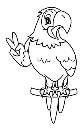 parot: macaw bird