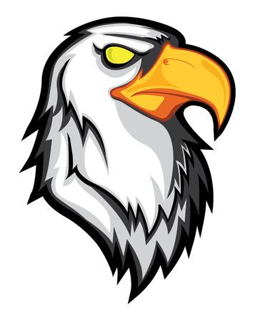 eagle head: eagle head