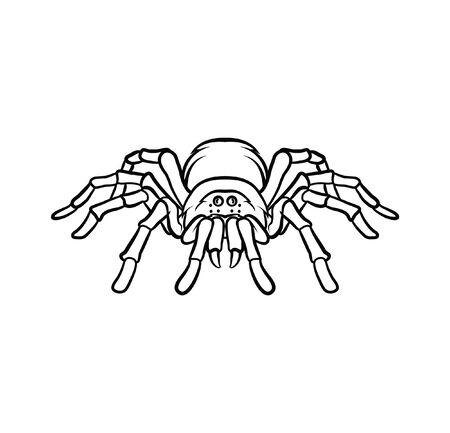 Tarantula tattoo Vector