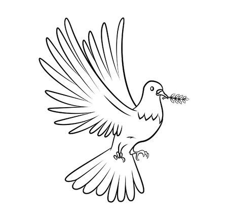 colomba della pace: Colomba della Pace