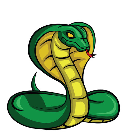 333 King Cobra Stock Illustrations, Cliparts And Royalty Free King ...