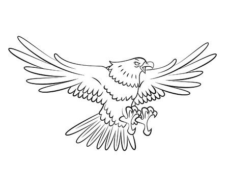 eagle flying Illustration
