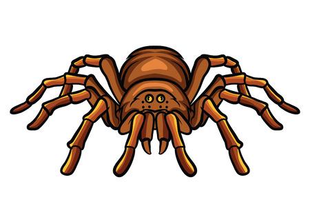 tarantula: Tarantula