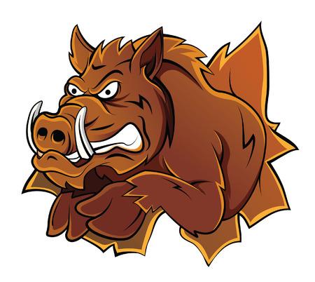 Wild Boar Head Vettoriali