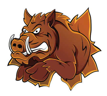 Wild Boar Head Vector