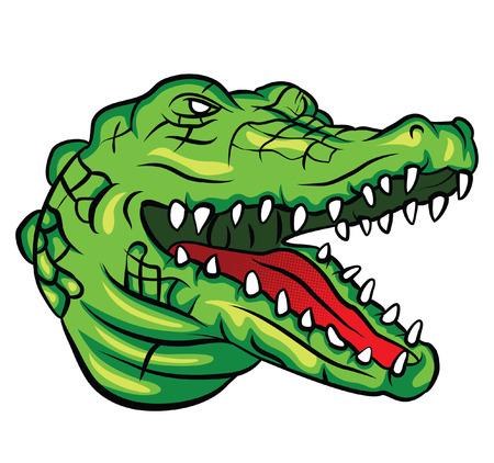 Crocodile Head Illustration