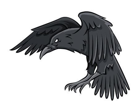 corvo imperiale: Corvino