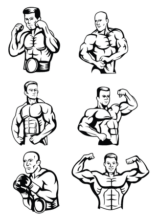 male body: Body Builder Collection Illustration
