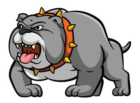 french bulldog: Bulldog