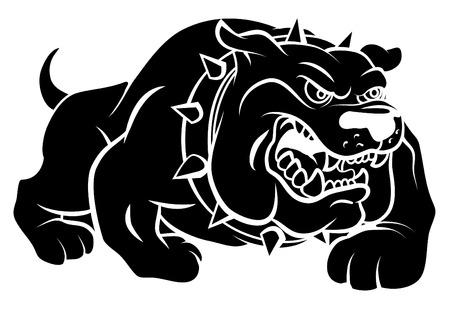 bulldog puppy: Bulldog