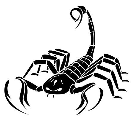 Escorpión de la mascota del tatuaje
